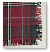 Plain Fringe Fly Plaid