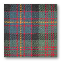 Tartan Swatch: Cameron of Erracht Muted