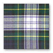 Tartan Swatch: Gordon Dress